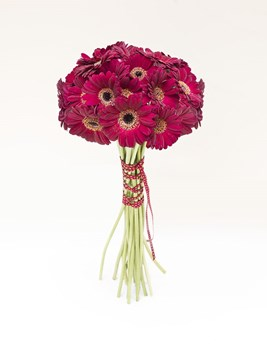 Bouquets: Red Gerbera Bouquet