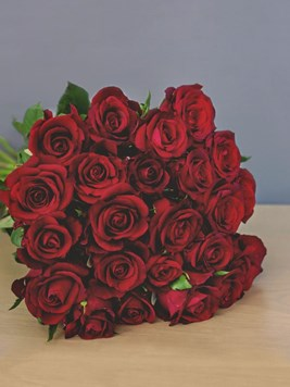 TFG: Two Dozen Romantic Red